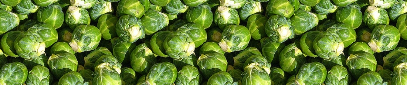 brussels sprouts with grapes