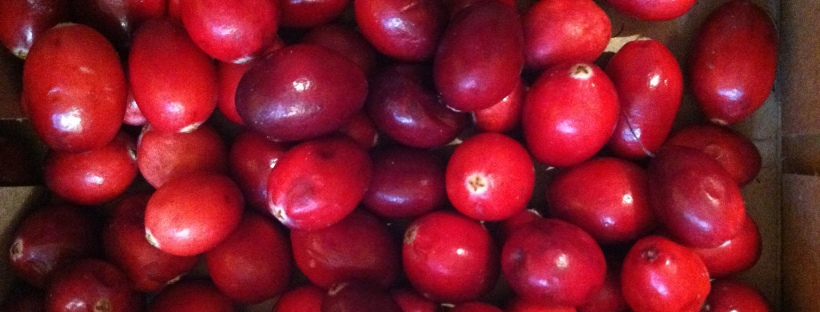 fresh whole cranberries