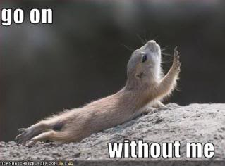 funny-pictures-chipmunk-asks-you-to