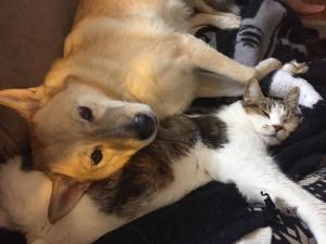 sadie-brody-cuddling